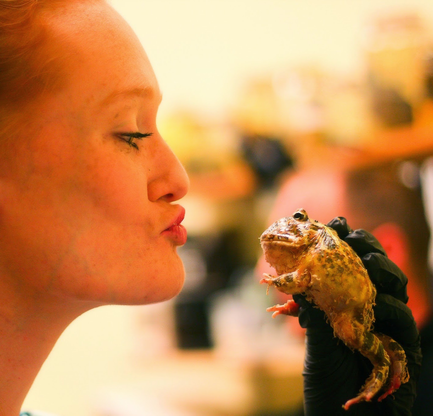 Work Hands-On With Reptiles & Amphibians